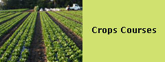 Crops Courses